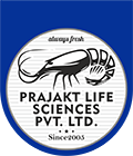 Welcome to Prajaktlife